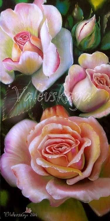 Ароматные розы.