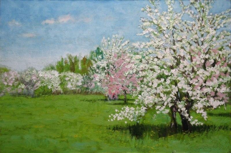 Весна.Яблоневый сад
