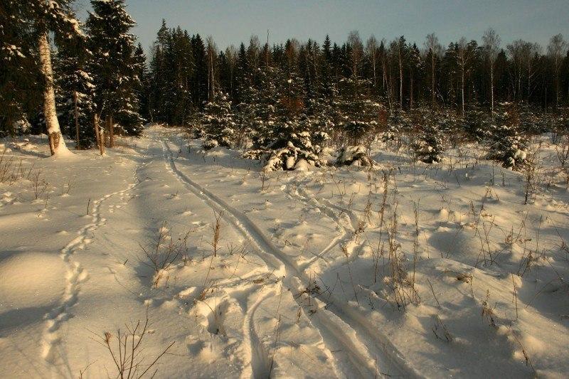 Подмосковная зима ....