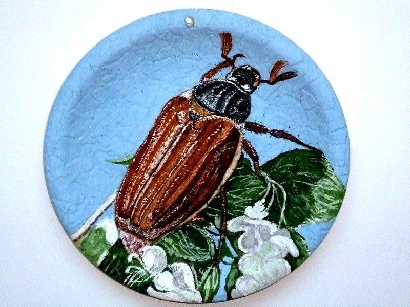 Ма́йские жуки́, или ма́йские хрущи́ (лат. Melolontha)