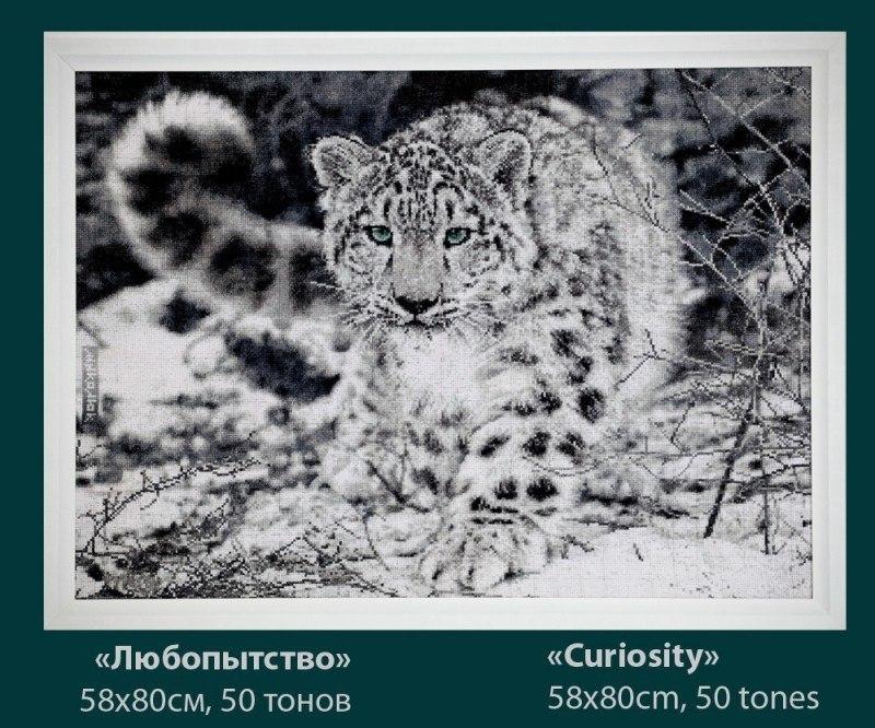 ;Любопытство   (вышивка крестиком)