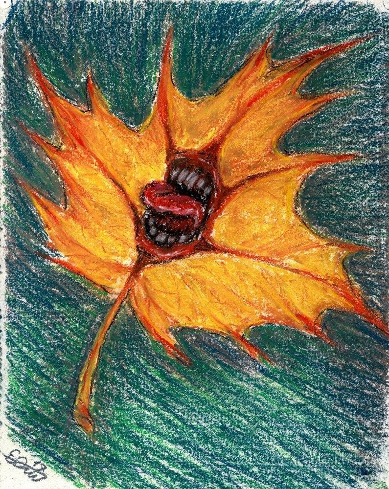 Осенняя агония, клен.