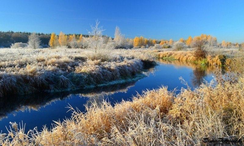 Осеннее утро на реке Плиса