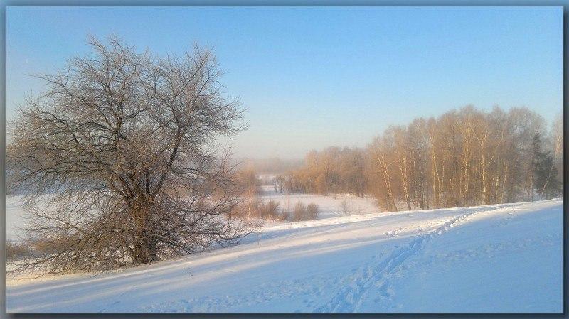 """из серии """" Подмосковная зима """" ......"""