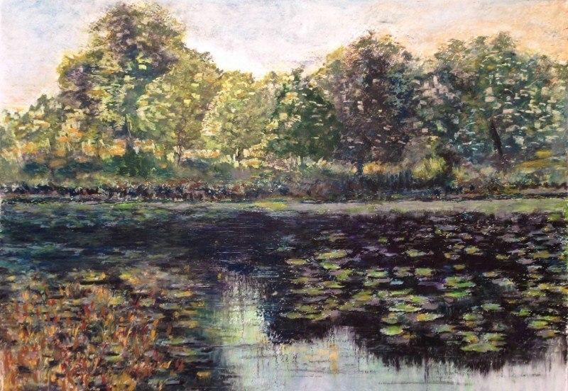 Заросший пруд в лесу