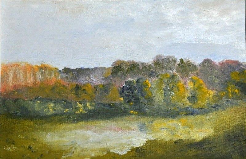 Осень в Щепкинском лесу
