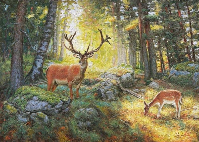 В тишине сказочного леса