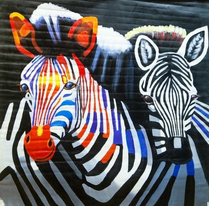 Зебры. Разноцветная любовь N2