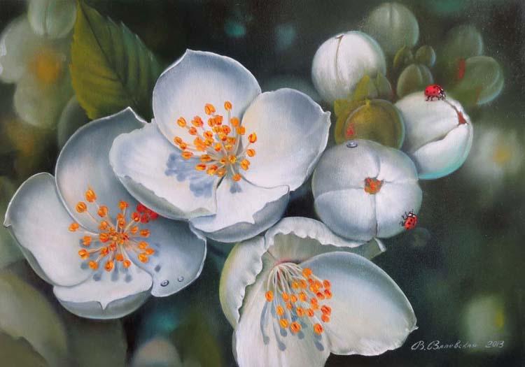 Цвет чубушника