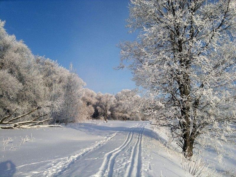 Подмосковная зима .....