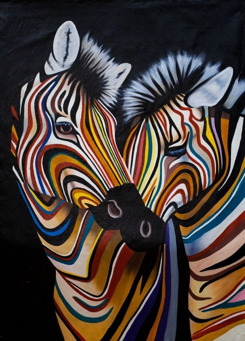 Разноцветные зебры N4