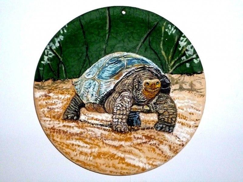 Слоновая черепаха, или галапагосская черепаха (лат. Chelonoi