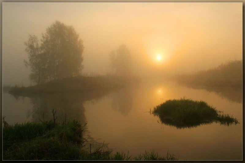 Мир тумана .....
