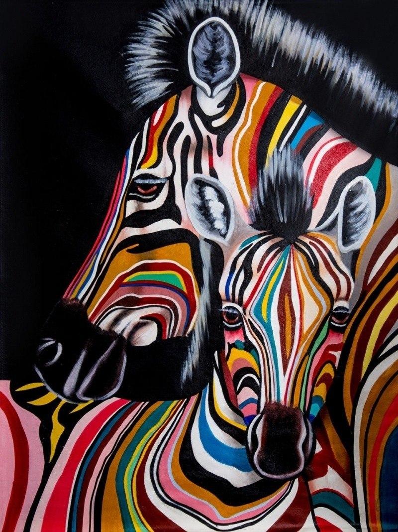 Разноцветные зебры N2