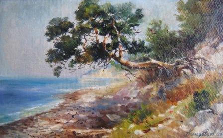 Сосна на берегу моря
