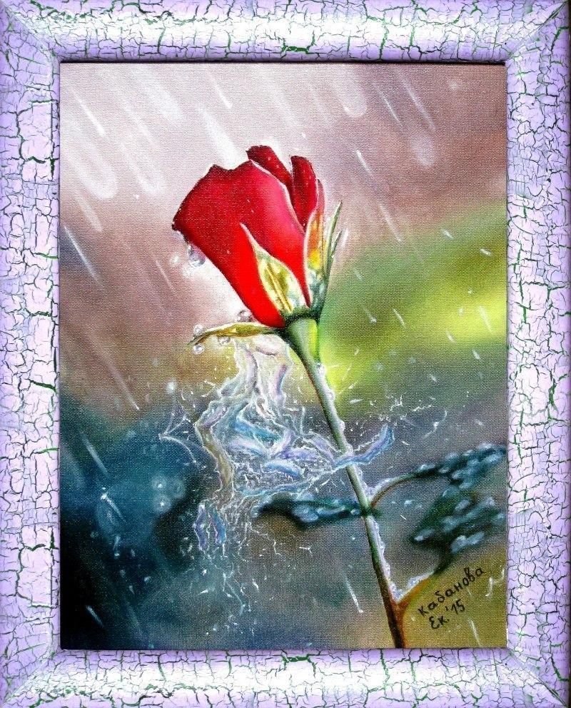 Роза под дождем