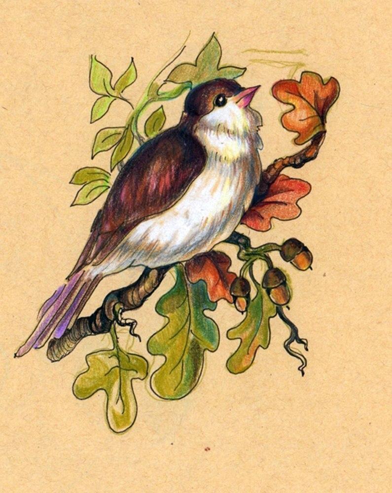 Пташечка