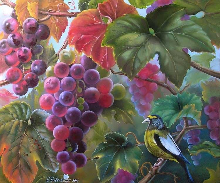 Виноград поспел