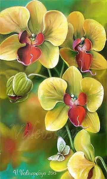 Желтая орхидея