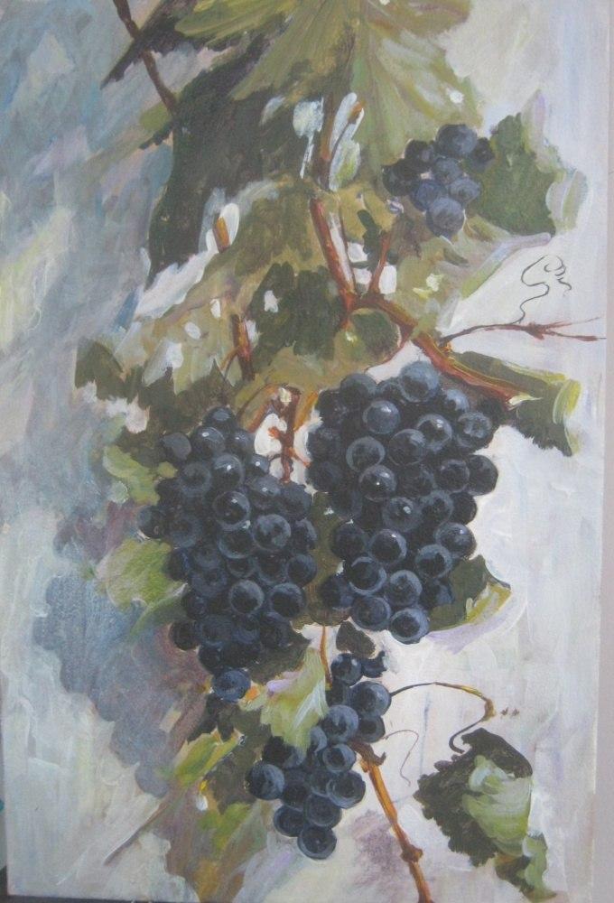 """виноград"""" Изабелла"""""""