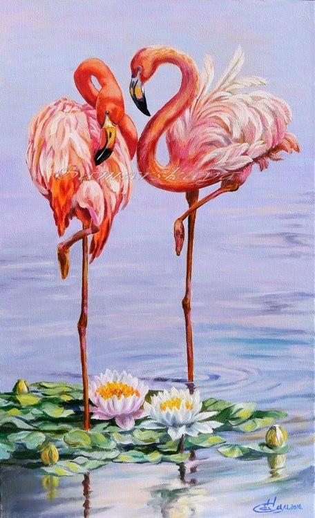 Свидание фламинго
