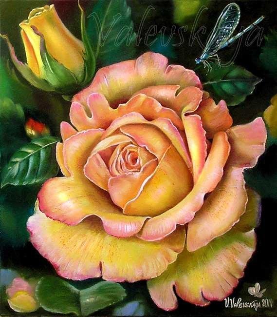Роскошная роза