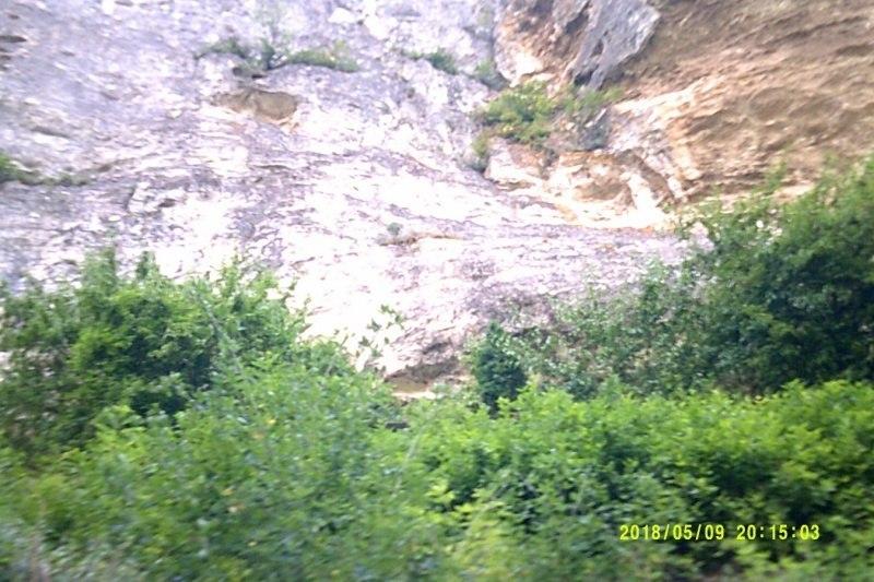 Как прекрасна крымская природа!