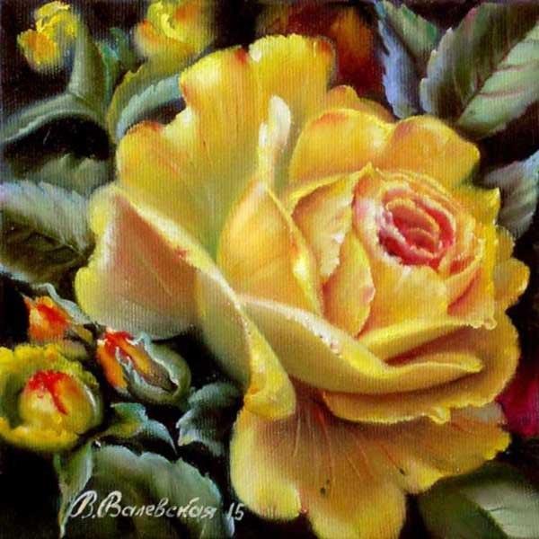 Теплая роза