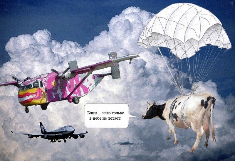 Блин ... чего только в небе не летает!