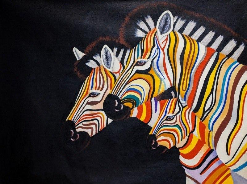 Разноцветные зебры N5