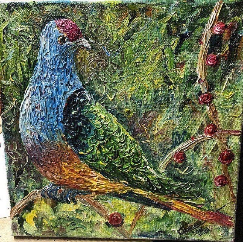 Мавританский цветной голубь