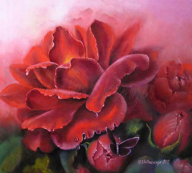 Бархатная роза