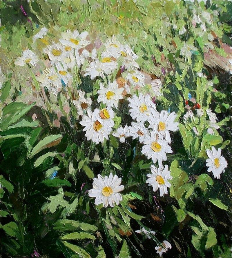 Цветы №21. Ромашки