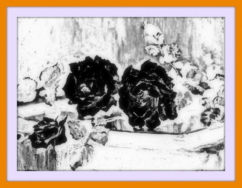 Черные розы, оставленные инкогнито на столике